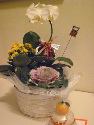 お正月の花&お供え