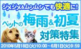 0518_pet_jimejime_165x100.jpg