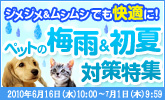 0616_pet_jimejime_165x100.jpg