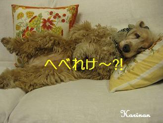 ブログ 12.14 ④ IMG_8658