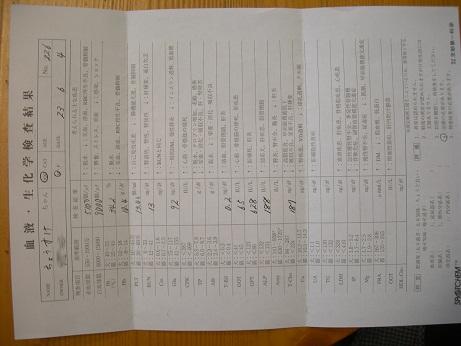 血液検査結果110604