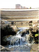 110218G 024水多い上谷戸池