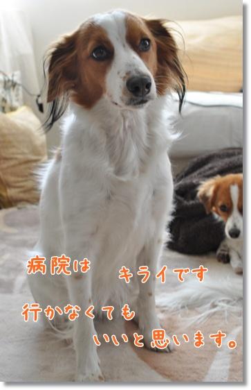 7jan12_0008a.jpg