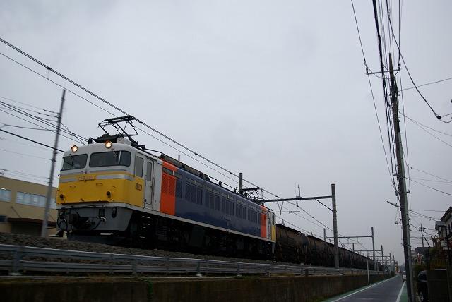 DSC06571.jpg