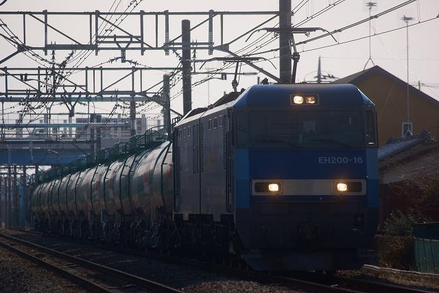 DSC07648.jpg