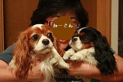 ne-san3.jpg
