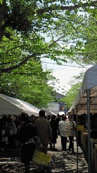sugahara8.jpg