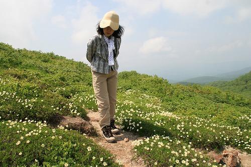 お花畑110619p2