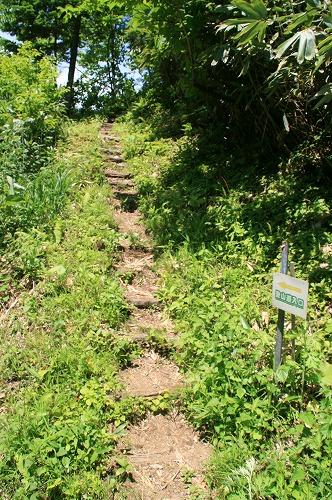 黒松内岳登山口110702