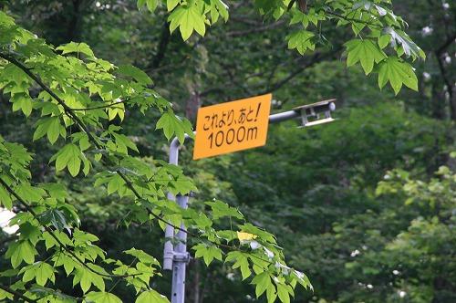 あと1000m表示110713
