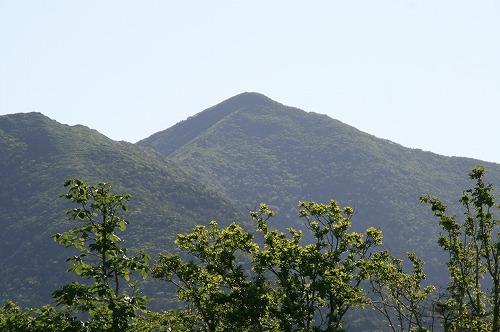 アポイ岳110813p7