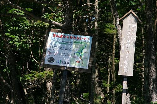 アポイ岳110813p10