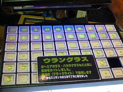 sP1050921.jpg