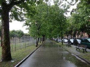 変換 ~ 雨の日