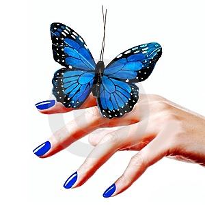 farfalla-blu-thumb8230276.jpg