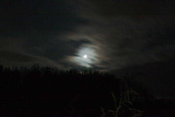 月齢7.3