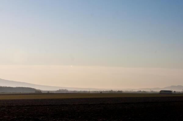 朝靄の大地