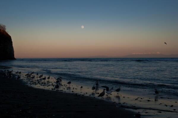 去年の今日 オホーツク海と知床半島