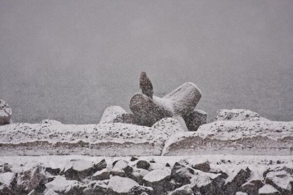 雪の防波堤