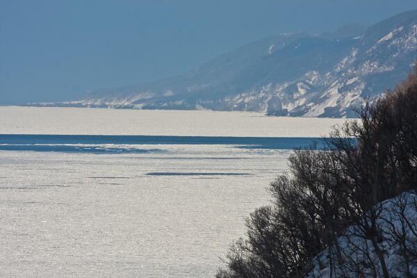 知床に流氷接岸