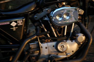 DSC_1081_convert_20110105181214.jpg