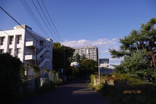 20101103002.jpg