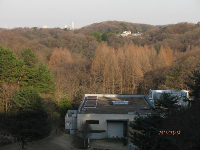 20110313-05.jpg