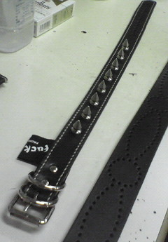 oreder dog neck belt spike 1