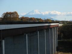 tatuzawaohasi1.jpg