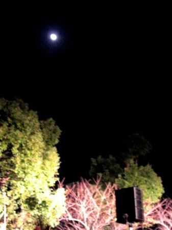 十三夜の月。