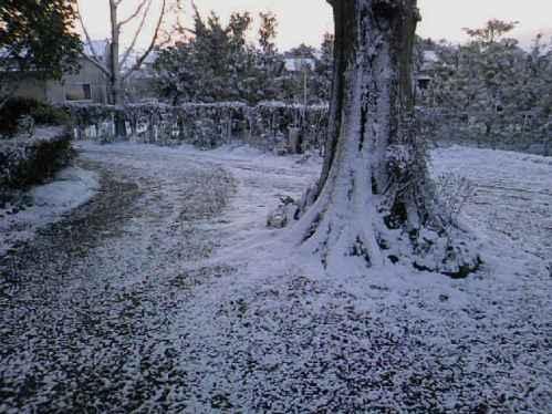 雪~車路。