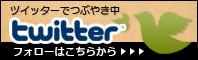 bn_twitter-3.jpg