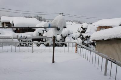 積雪qwo