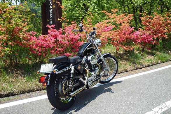 2010_0518戸田別館 0005