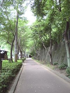 トンネル道