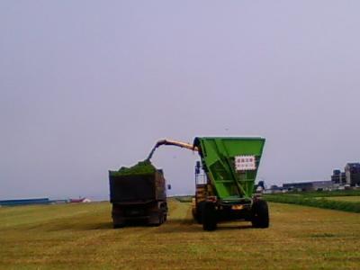 牧草積み込み後ろ姿
