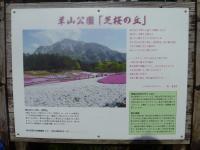 furufuru 羊山公園1