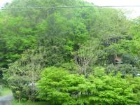 furufuru高尾山