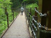 furufuru高尾山8