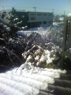 初雪ん♪ ^^
