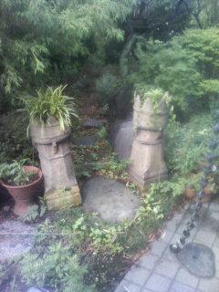 ジャングルの入口・・・