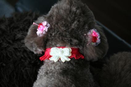 fusuya091224_3.jpg