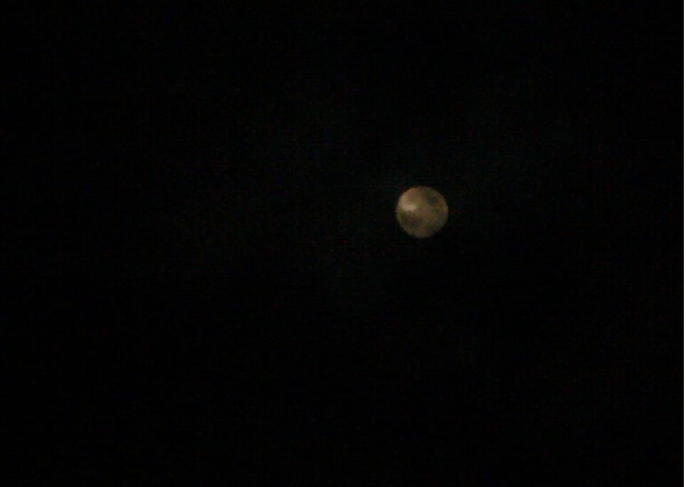 雲が出ていて、お月様が見えないよー (´д`、)