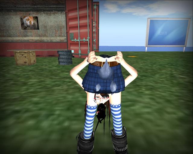 Snapshot_004_20100113002731.jpg
