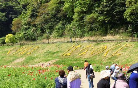 ryokouki001 (29)