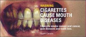 tabakosinikuen