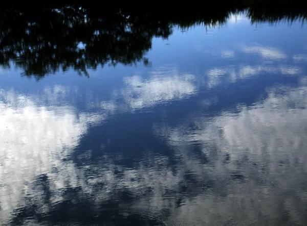 初夏の水面04