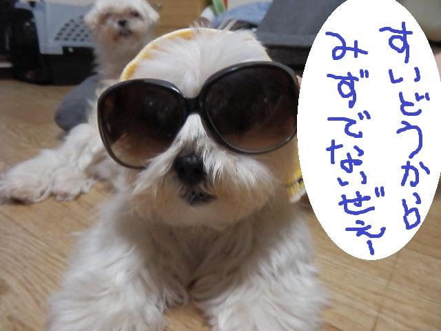 001_20120830014732.jpg