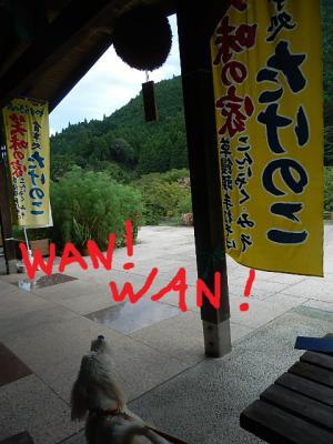 wan_20120822233751.jpg