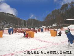 芸北雪合戦10`-01